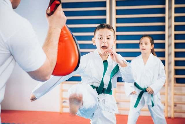 Fitness, DePalmas Team USA Martial Arts - SG Arizona, AZ