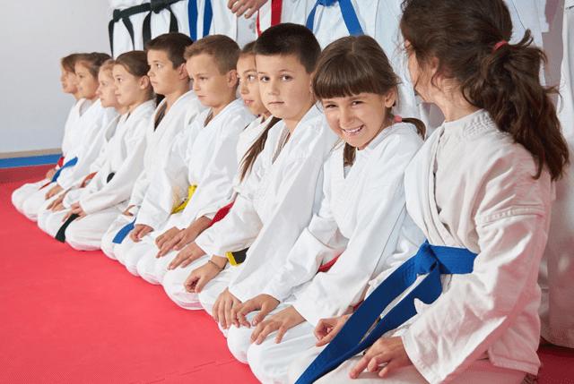Kidsvirtualleader, DePalmas Team USA Martial Arts - SG Arizona, AZ