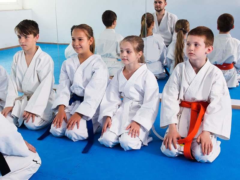 Kidsma, DePalmas Team USA Martial Arts - SG Arizona, AZ
